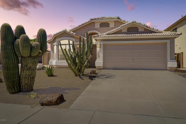 6542 W Saddlehorn Road, Phoenix, AZ 85083 (MLS #5940386) :: The Bill and Cindy Flowers Team
