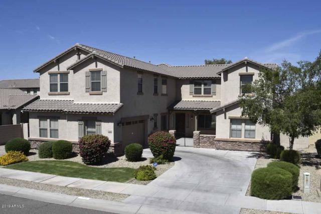 2140 S 168TH Drive, Goodyear, AZ 85338 (MLS #5940426) :: Occasio Realty