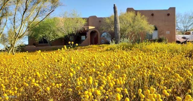 43923 N 20TH Street, New River, AZ 85087 (MLS #5940622) :: Revelation Real Estate