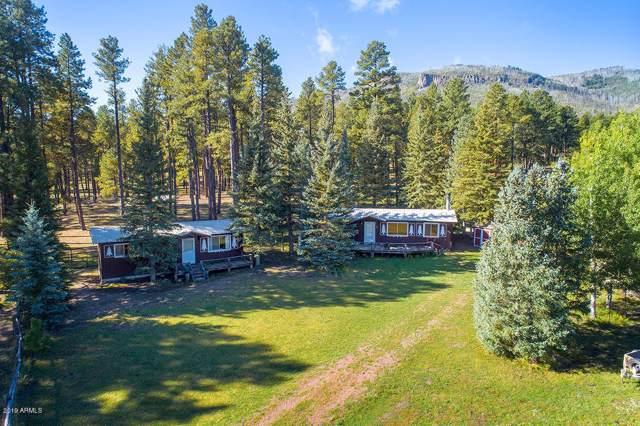25329 Hwy 191, Alpine, AZ 85920 (MLS #5940693) :: Revelation Real Estate