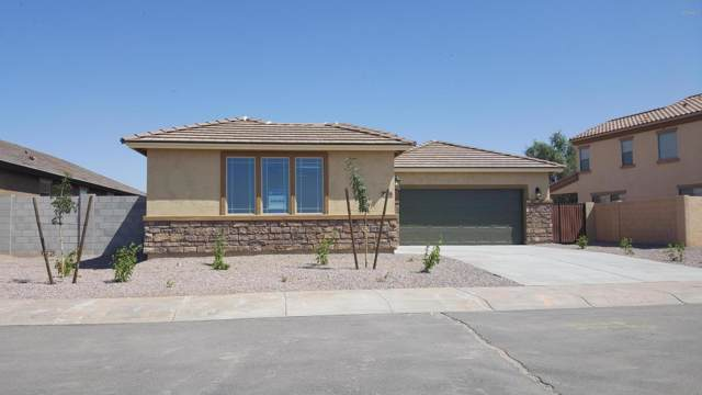 37536 W Frascati Avenue, Maricopa, AZ 85138 (MLS #5940730) :: Keller Williams Realty Phoenix