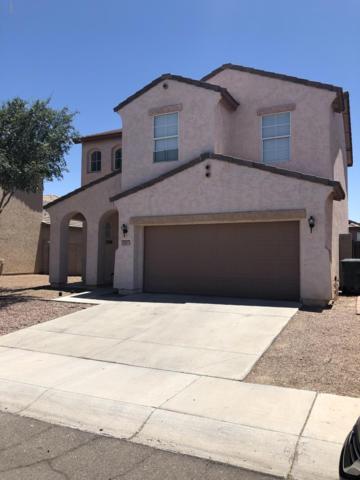 1007 E Grove Street, Phoenix, AZ 85040 (MLS #5940820) :: Nate Martinez Team