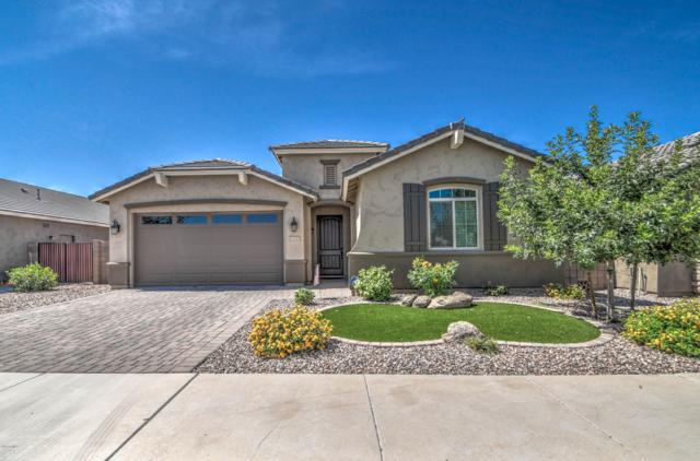 20745 E Canary Way, Queen Creek, AZ 85142 (MLS #5940822) :: Revelation Real Estate