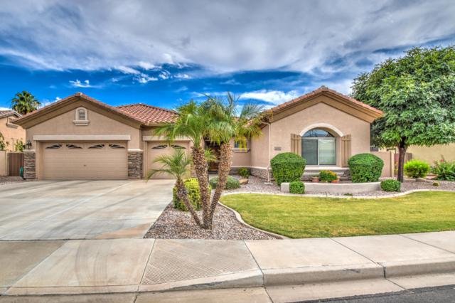 2771 E Buena Vista Drive, Chandler, AZ 85249 (MLS #5940869) :: The C4 Group
