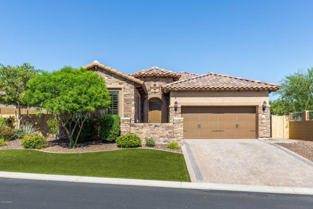1639 N Atwood Circle, Mesa, AZ 85207 (MLS #5940909) :: Revelation Real Estate