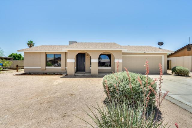 3223 W Potter Drive, Phoenix, AZ 85027 (MLS #5940959) :: Occasio Realty