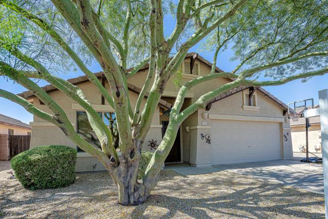 3104 E Winged Foot Drive, Chandler, AZ 85249 (MLS #5940983) :: Revelation Real Estate