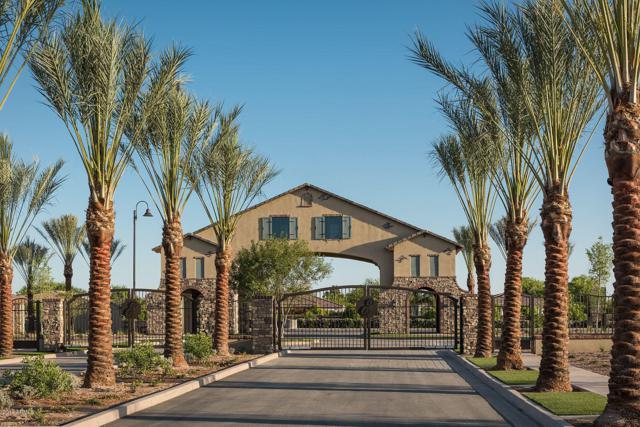 3260 E Knoll Circle, Mesa, AZ 85213 (MLS #5941056) :: Occasio Realty