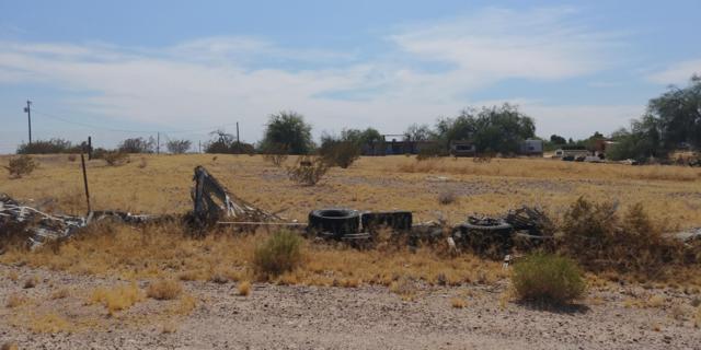 134XX S 335th Avenue, Arlington, AZ 85322 (MLS #5941099) :: Brett Tanner Home Selling Team