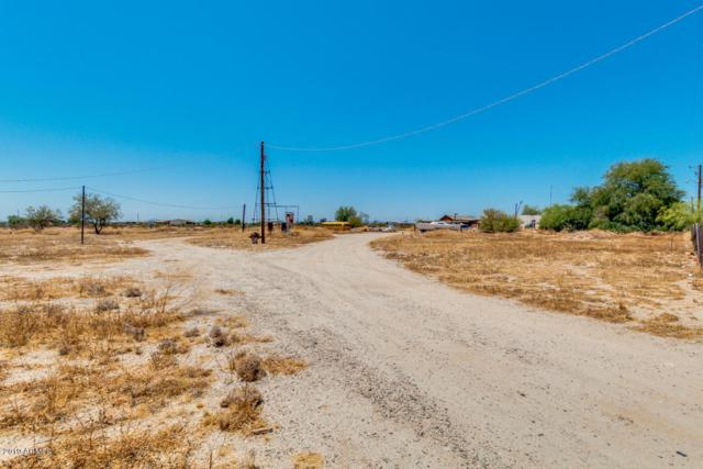 29714 W Pierce Street, Buckeye, AZ 85396 (MLS #5941280) :: Riddle Realty