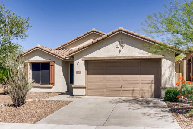 3752 W Denali Drive, Anthem, AZ 85086 (MLS #5941923) :: Revelation Real Estate