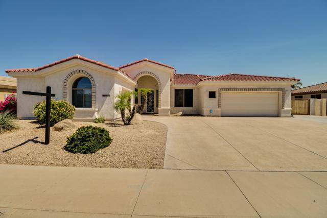 14636 W Edgemont Avenue, Goodyear, AZ 85395 (MLS #5942118) :: REMAX Professionals