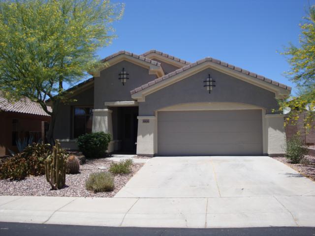41436 N Bent Creek Way, Phoenix, AZ 85086 (MLS #5942534) :: Revelation Real Estate