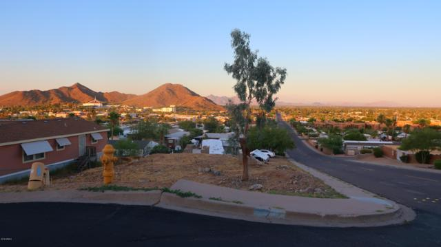 13005 N 18TH Place, Phoenix, AZ 85022 (MLS #5942670) :: Brett Tanner Home Selling Team