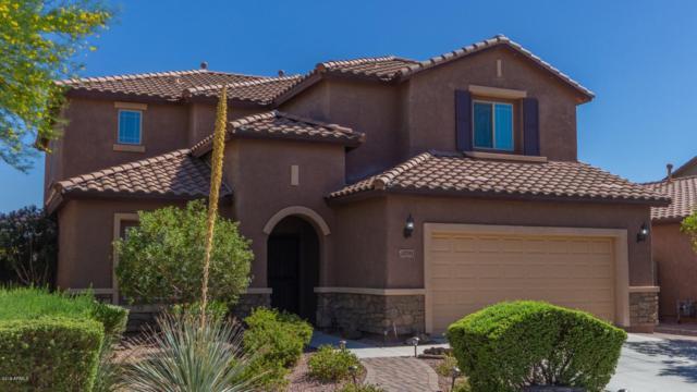 10791 W El Cortez Place, Peoria, AZ 85383 (MLS #5943298) :: The Kenny Klaus Team