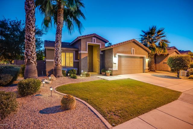 412 N Wilson Drive, Chandler, AZ 85225 (MLS #5943328) :: Openshaw Real Estate Group in partnership with The Jesse Herfel Real Estate Group