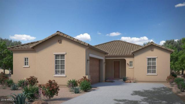 23449 S 212TH Street, Queen Creek, AZ 85142 (MLS #5943468) :: Conway Real Estate