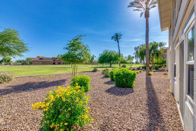 10833 N Fairway Court E, Sun City, AZ 85351 (MLS #5944061) :: Occasio Realty