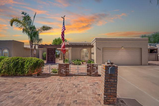 9625 E Navajo Place, Sun Lakes, AZ 85248 (MLS #5944661) :: REMAX Professionals