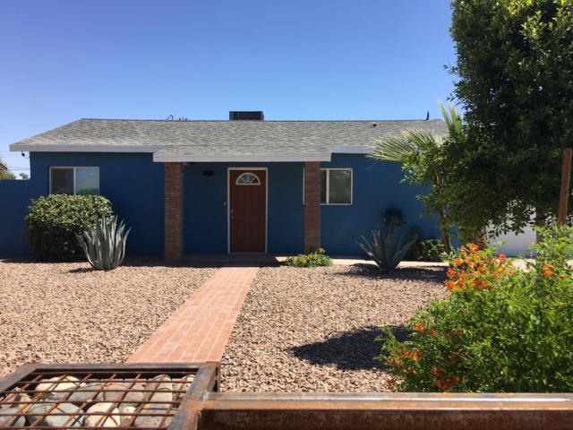 3335 E Pierce Street, Phoenix, AZ 85008 (MLS #5944931) :: Keller Williams Realty Phoenix