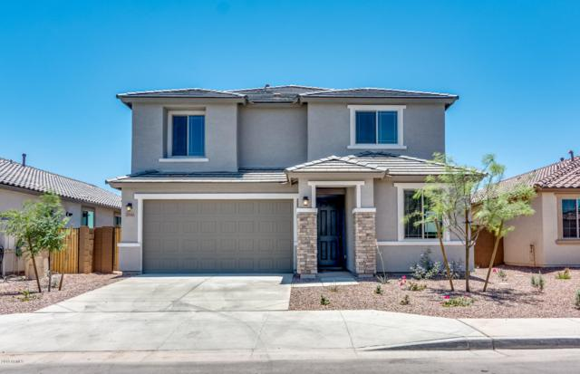 20143 W Buchanan Street, Buckeye, AZ 85326 (MLS #5945193) :: Riddle Realty Group - Keller Williams Arizona Realty