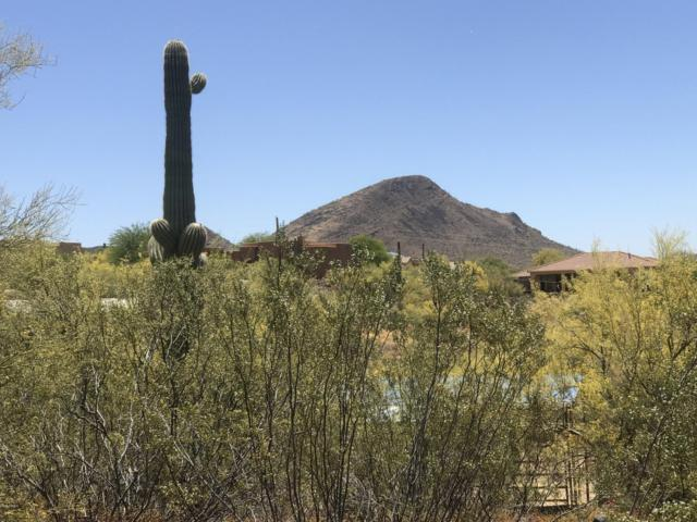 45125 N 18TH Street, New River, AZ 85087 (MLS #5946444) :: Team Wilson Real Estate