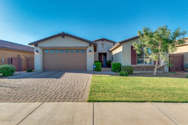 154 W Hackberry Avenue, Queen Creek, AZ 85140 (MLS #5947118) :: Revelation Real Estate