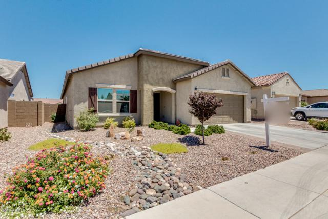 5562 W Victory Way, Florence, AZ 85132 (MLS #5947381) :: CC & Co. Real Estate Team