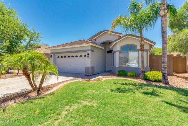 4208 N 125TH Avenue, Litchfield Park, AZ 85340 (MLS #5947673) :: CC & Co. Real Estate Team