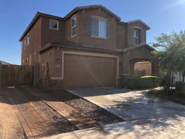 21270 W Berkeley Road, Buckeye, AZ 85396 (MLS #5947795) :: The Kenny Klaus Team