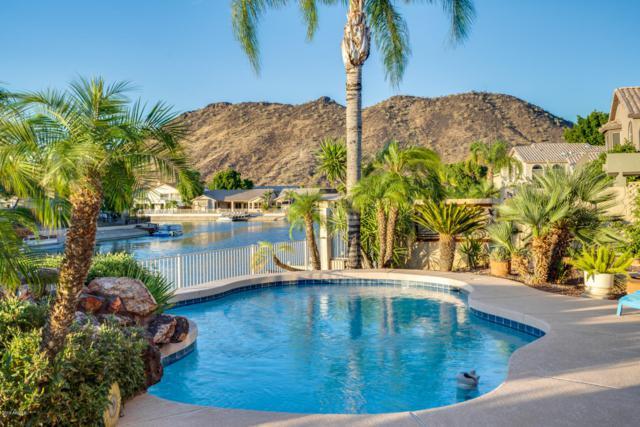 5346 W Tonopah Drive, Glendale, AZ 85308 (MLS #5948722) :: The Pete Dijkstra Team