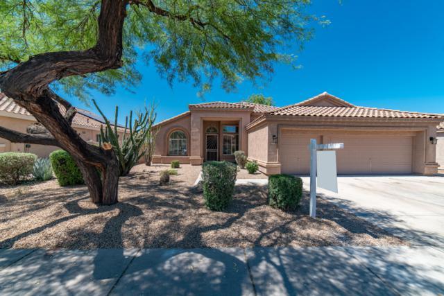 4355 E Sands Drive, Phoenix, AZ 85050 (MLS #5948763) :: Keller Williams Realty Phoenix