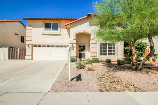 12485 N 57TH Avenue, Glendale, AZ 85304 (MLS #5948800) :: Brett Tanner Home Selling Team
