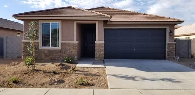 24736 W Wayland Drive, Buckeye, AZ 85326 (MLS #5949246) :: CC & Co. Real Estate Team