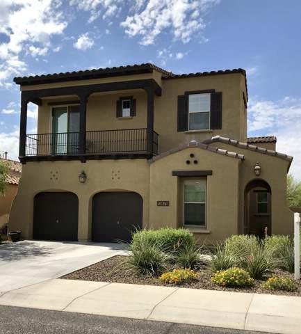 13679 W Creosote Drive, Peoria, AZ 85383 (MLS #5949329) :: Yost Realty Group at RE/MAX Casa Grande