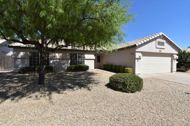 21443 N 33RD Lane, Phoenix, AZ 85027 (MLS #5949477) :: The Pete Dijkstra Team