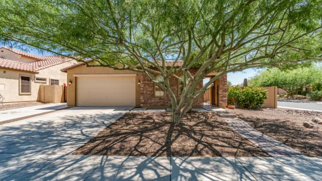 29557 N 70TH Avenue, Peoria, AZ 85383 (MLS #5949628) :: CC & Co. Real Estate Team