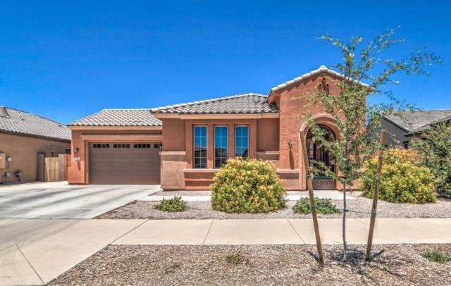 20912 E Camina Buena Vista, Queen Creek, AZ 85142 (MLS #5950158) :: CC & Co. Real Estate Team