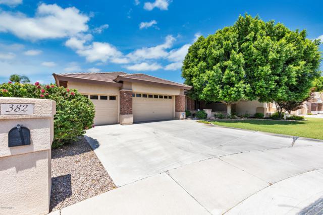 382 W Vinedo Lane, Tempe, AZ 85284 (MLS #5950367) :: Revelation Real Estate