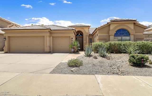 4321 E Morning Vista Lane, Cave Creek, AZ 85331 (MLS #5950456) :: CC & Co. Real Estate Team