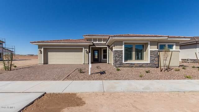 20976 E Raven Drive, Queen Creek, AZ 85142 (MLS #5950849) :: Revelation Real Estate