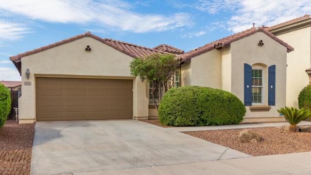 930 E Canyon Way, Chandler, AZ 85249 (MLS #5951363) :: CC & Co. Real Estate Team