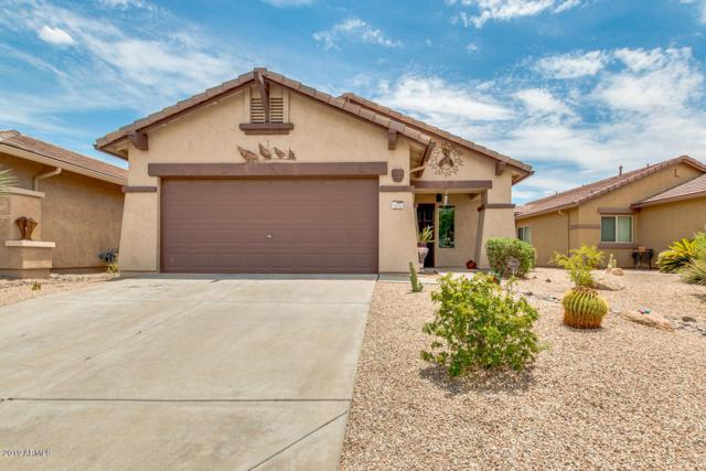 10055 E Meandering Trail Lane, Gold Canyon, AZ 85118 (MLS #5951394) :: Occasio Realty