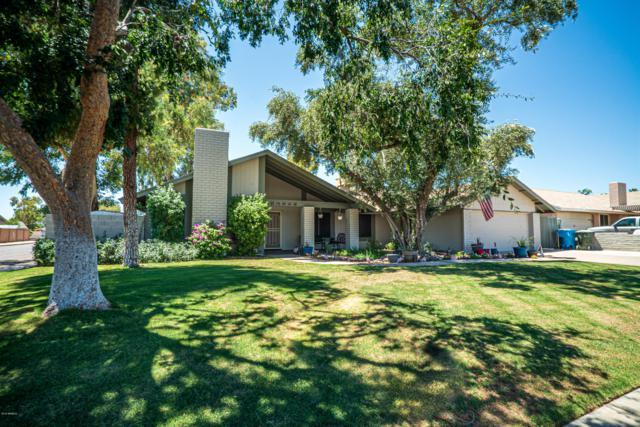 15222 N 23RD Lane, Phoenix, AZ 85023 (MLS #5951397) :: Revelation Real Estate