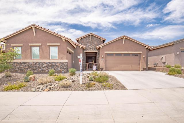 10440 W Nosean Road, Peoria, AZ 85383 (MLS #5951433) :: CC & Co. Real Estate Team