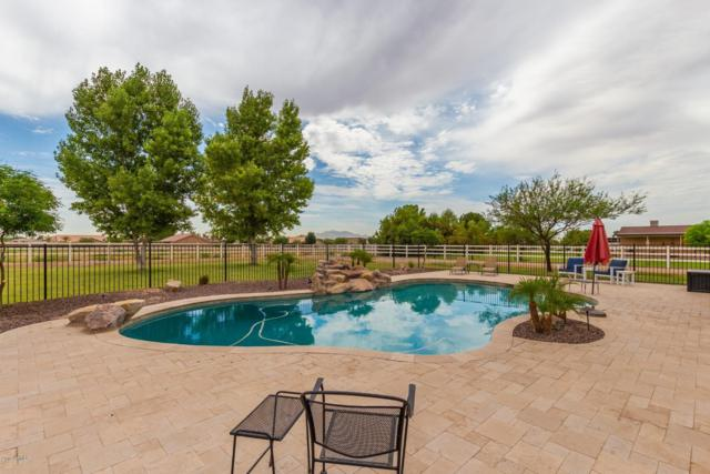 2413 S 200TH Lane, Buckeye, AZ 85326 (MLS #5951457) :: The Property Partners at eXp Realty