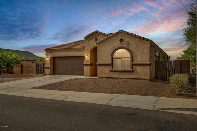 21897 W Hopi Street, Buckeye, AZ 85326 (MLS #5951523) :: The Property Partners at eXp Realty