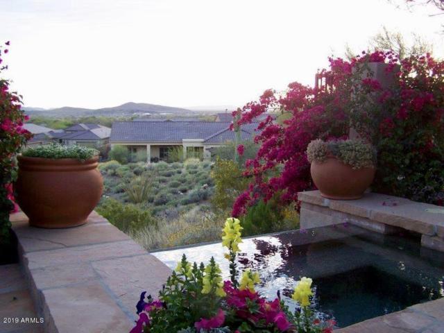 42114 N Anthem Heights Drive, Anthem, AZ 85086 (MLS #5951713) :: Team Wilson Real Estate