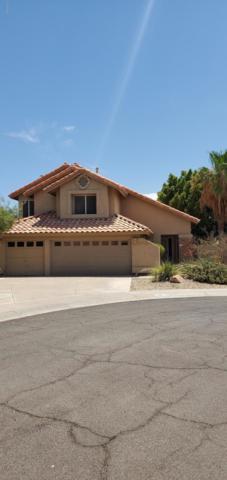 16815 S 34TH Way, Phoenix, AZ 85048 (MLS #5952135) :: Revelation Real Estate