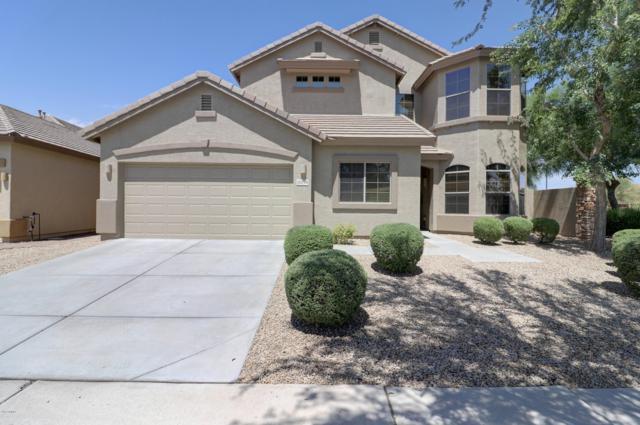 33718 N 24TH Drive, Phoenix, AZ 85085 (MLS #5952344) :: Occasio Realty